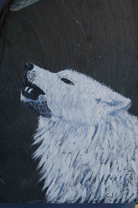 Lobo blanco