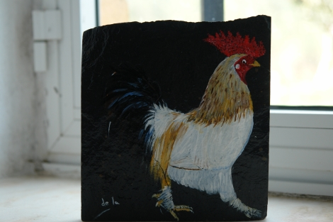 mi gallo de corral